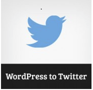 Wordpress to Twitter Plugin Graphic